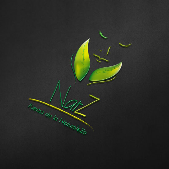 Création du logo NaturaleZa